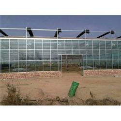 平頂山玻璃溫室 欣榮溫室工程 (在線咨詢)太原玻璃溫室價格