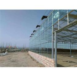 周口玻璃温室 欣荣温室工程 (在线咨询)焦作玻璃温室图片