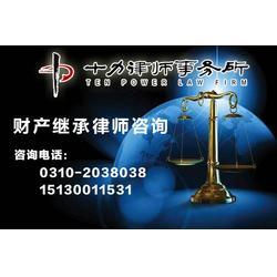 邯郸律师-十力律师-律师图片