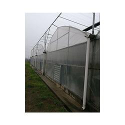 亿农农业 简易连栋大棚设计-济源简易连栋大棚图片