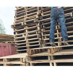 定制木托盤、宣城木托盤、合肥創林美木托盤(查看)圖片