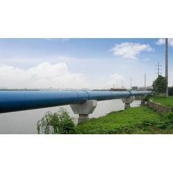 山东中大塑管给水管、莱芜pe给水管、100级pe给水管图片