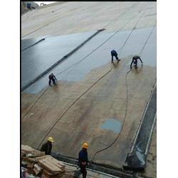 温州天冬聚脲免砸转防水涂料-金铂尔20年图片