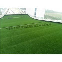 唐山人造草坪|天津基业长青体育|人造草坪厂图片