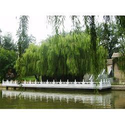 石栏杆-草白玉石栏杆-众意天宇(优质商家)图片