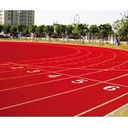 专业园林塑胶跑道施工,塑胶跑道施工,行业领跑者图片