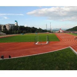 北京专业塑胶跑道施工公司_奥鑫双丰(在线咨询)_塑胶跑道施工图片