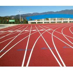塑胶跑道施工,塑胶跑道施工材料,奥鑫双丰(优质商家)图片