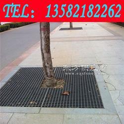 道路绿化树篦子大量库存图片