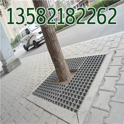 街道绿化树篦子现货图片