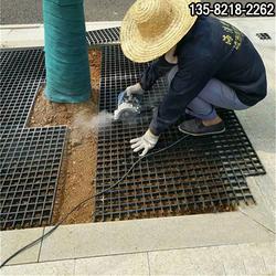 批量供应校园树箅子,黑色道路水篦子单价图片