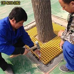 树脂树穴网格现货供应,护树围子价位图片