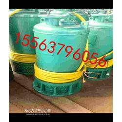 矿用泵BQS潜水排沙泵BQS潜水泵 BQS排沙泵潜污泵图片