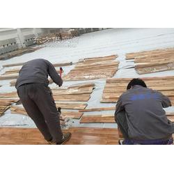 篮球馆运动木地板 畅森公司图片