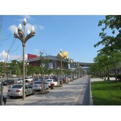 安徽12米玉兰灯、天煌照明、12米玉兰灯生产厂家图片