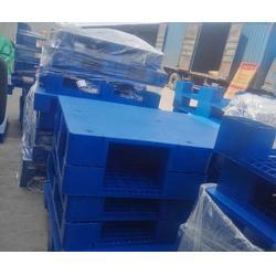 双面塑料托盘、威海塑料托盘、好运塑料制品厂销售(查看)图片