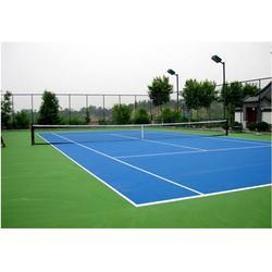 四川校园羽毛球场地|校园羽毛球场地实施|阳光体育(优质商家)图片