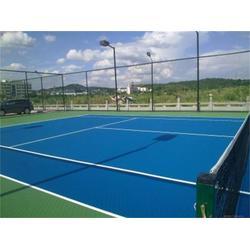 天津市阳光体育设施(图)、硅pu篮球场厂、硅pu篮球场图片