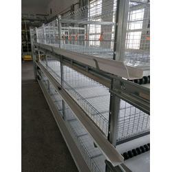 立式肉鸡笼子-肉鸡笼子-运盈机械生产厂家(查看)图片
