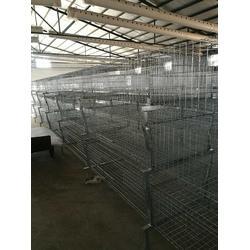 肉鸡笼-运盈机械鸡笼厂家-肉鸡笼厂家图片