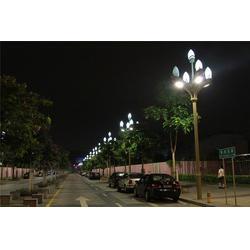 天煌照明 城市照明(多图)|12米玉兰灯|玉兰灯图片