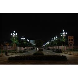 呼和浩特12米玉兰灯|天煌照明|12米玉兰灯商图片