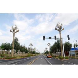 7米玉兰灯、玉兰灯、江苏天煌照明 高杆灯(多图)图片