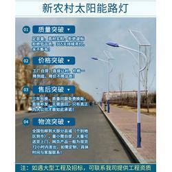 天煌照明 太阳能路灯(图)、6米太阳能路灯、太阳能路灯图片