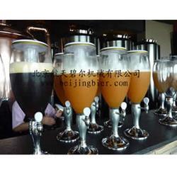 酒吧啤酒设备、啤酒设备、航天碧尔啤酒设备图片