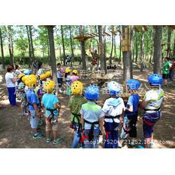 城堡主题淘气堡乐园生产厂家 儿童室内乐园设备游乐园采购首选图片