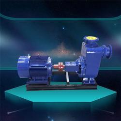 镇江100ZX100-65卧式自吸泵,石保泵业(优质商家)图片