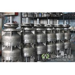 云南不锈钢潜水泵-高压不锈钢潜水泵-奥特泵业(优质商家)图片