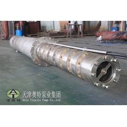 山西天津不锈钢潜水泵厂家-奥特泵业图片