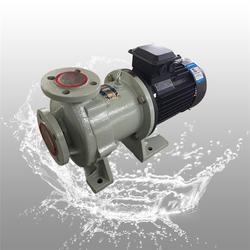 管道式磁力泵、CQB40-25-125FT耐腐磁力泵图片
