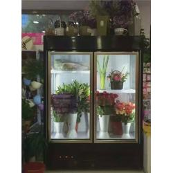 鲜花陈列柜,达硕制冷设备生产,鲜花陈列柜哪家好图片