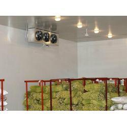 保鲜库、蓝梦枫叶(优质商家)、100平米水果保鲜库图片