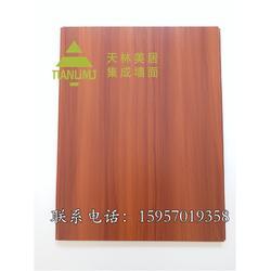 铝合金集成墙面厂家-天林美居专业求实-铝合金集成墙面价格