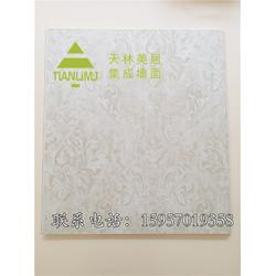 铝合金集成墙面-铝合金集成墙面-天林美居(推荐商家)图片