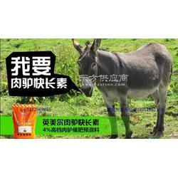 肉驴吃什么驴喂什么饲料长的快图片