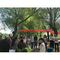 郑州郊区烧烤食材配送、速捷烧烤配送、野外烧烤食材配送图片