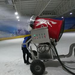 28KW大功率造雪机 人工造雪机参数图片