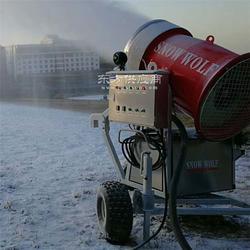 造雪机厂家保养和配件供应方便的造雪机图片