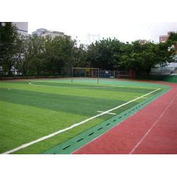 足球场地铺设|世纪腾达设施安装工程|足球场地图片