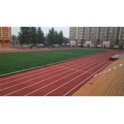 体育中心塑胶跑道、世纪腾达体育设施安装、塑胶跑道图片