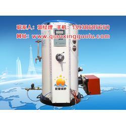 宁夏燃油气开水锅炉、燃油气开水锅炉系统、乾星锅炉(优质商家)图片