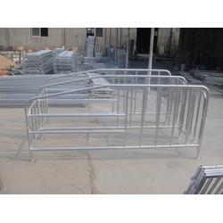强旺养殖设备售后保障,猪用限位栏报价,廊坊猪用限位栏图片