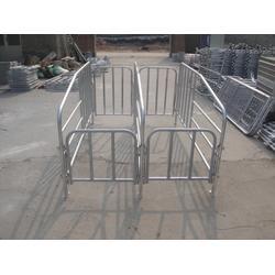 开封猪用限位栏、强旺养殖设备厂家直销、猪用限位栏厂家图片
