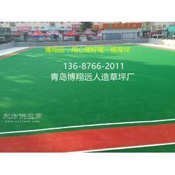 门球场人造绿色草坪-怎么买合适【已解决】图片