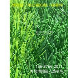 人造草坪仿真草坪绿色地毯厂家-怎么买合适【已解决】图片