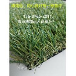 天津人造草坪生产厂家图片
